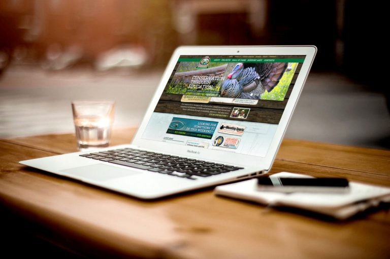 Web Design- Success with Ease and Learning Experience