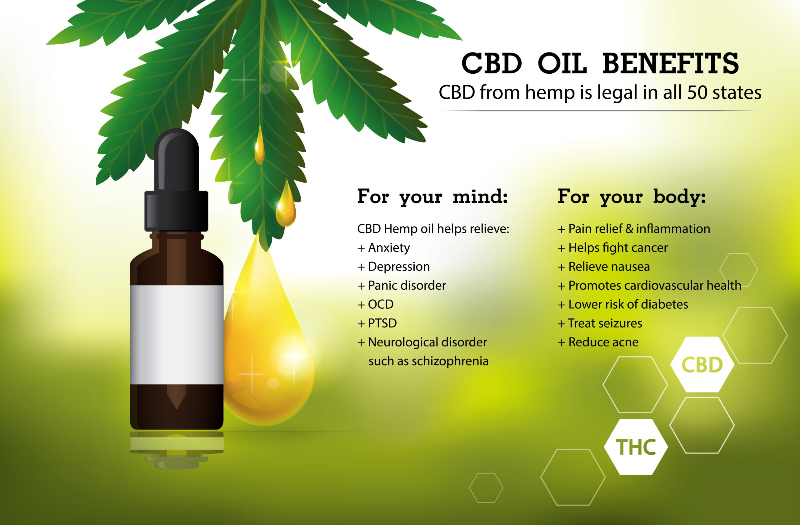 The Working Process Of Cbd Oil To Heal The Mental State