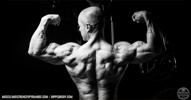 Amino Acid Body Building – Learn About The Body Building Supplements